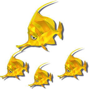 fish_shuang_long/fish1